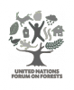 United Nations Forum on Forests